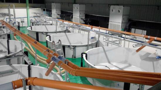 乌鲁木齐低温热泵集中供暖冬季稳定40度热水